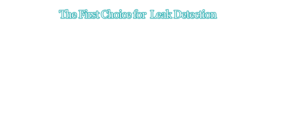 The First Choice for Leak Detection
